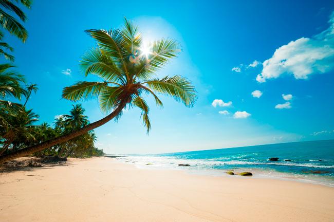 Passeio às Ilhas dos Frades e Itaparica